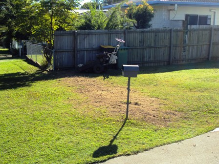 Stump Grinding Redcliffe Old Hedge Removal All Access