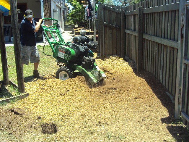 All Access Stump Grinding to allow for installation of a sand pit and Cubby house