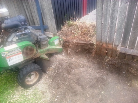 Stump grinding Norman Park