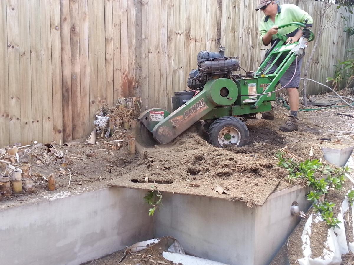 Stump grinding Bardon All Access Stump Grinding