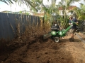 Bamboo removal in Deagon