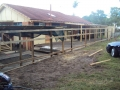 COMPLETED FENCE AT INALA 002