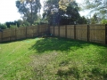 Timber fence construction Windsor