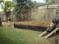 Garden cleaned out and stumps ground