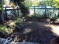 Once the stump was ground by www.allaccess-stumpgrinding.com.au the transformation is started.
