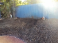 The back yard a Tarragindi is now ready for landscape work to continue as the stump has now been removed.