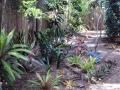 Garden re mulch and new plantings