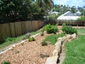 Some plants retained and transplanted to new garden bed