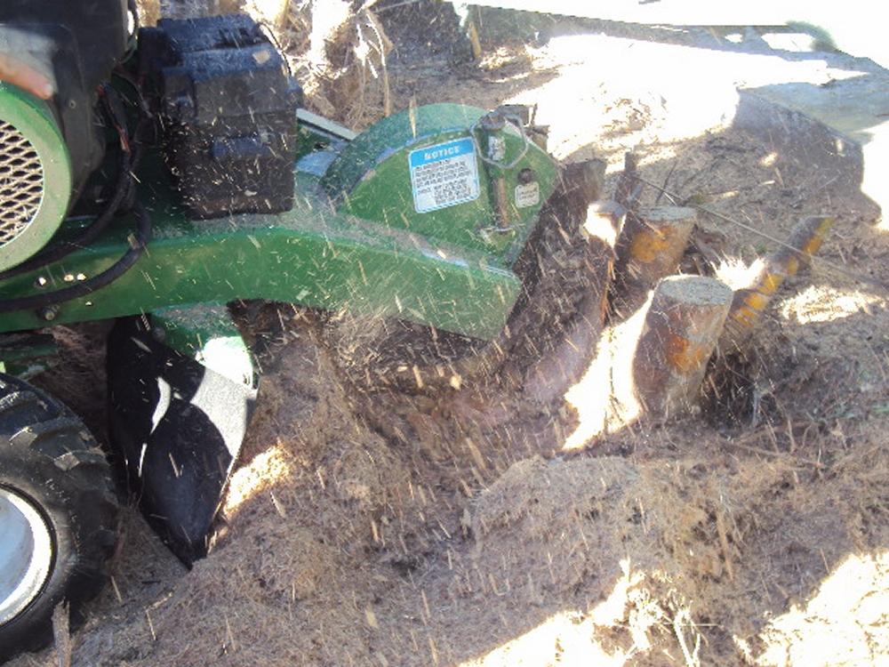Stump Removal Brisbane All Access Stump Grinding