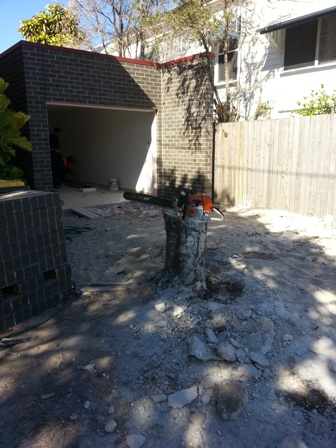 Stump grinding wynnum