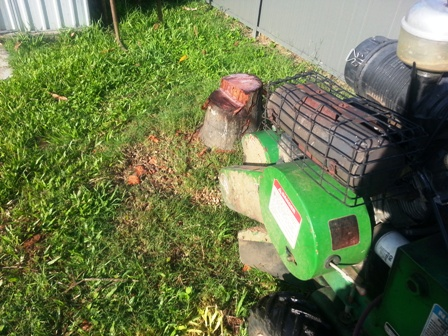 All Access -Stump Removal Stafford Heights palm stump