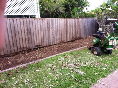 Stump Grinding Wooloowin bamboo removal