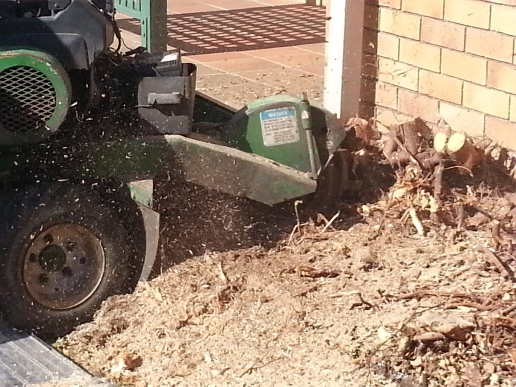 Stump Grinding Ferny Hills
