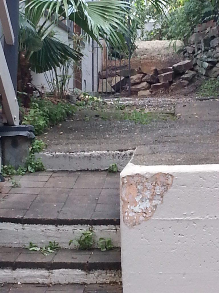 Stump Grinding Kelvin Grove