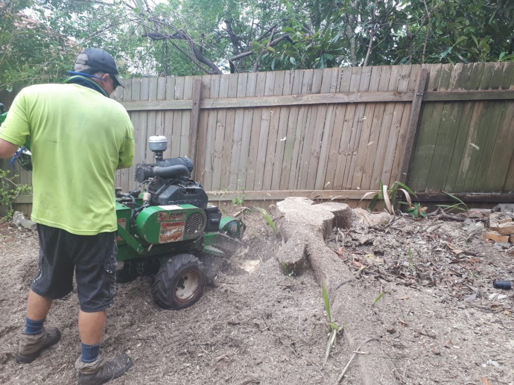All Suburbs Stump Grinding