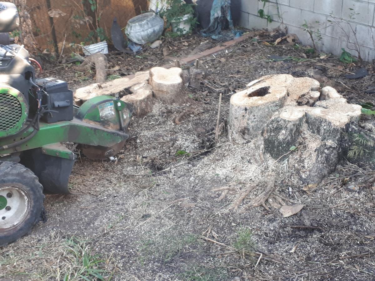 Stump grinder hire Brisbane