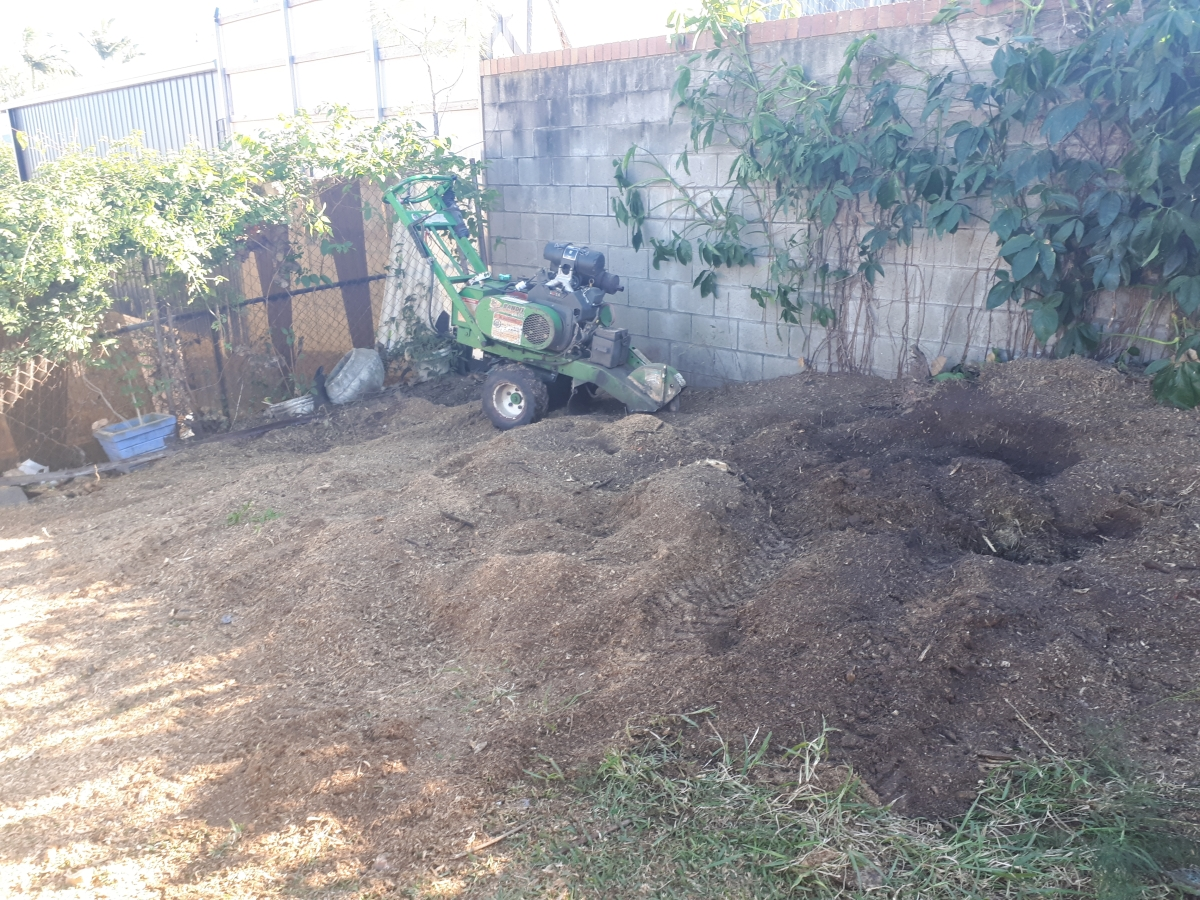 Stump grinding New Farm sloping ground