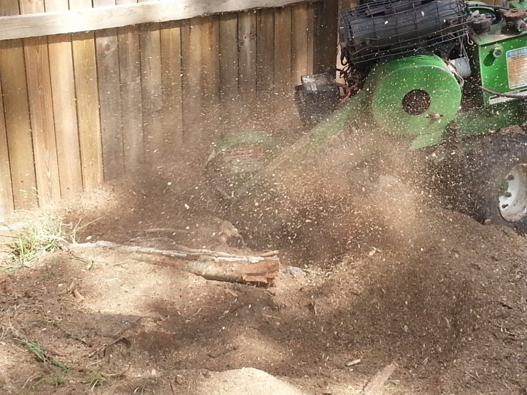 Stump Removal Zillmere