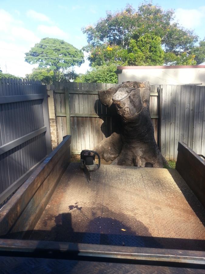Tree trunk grinding