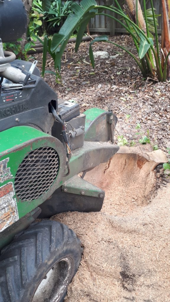 North Side stump grinding