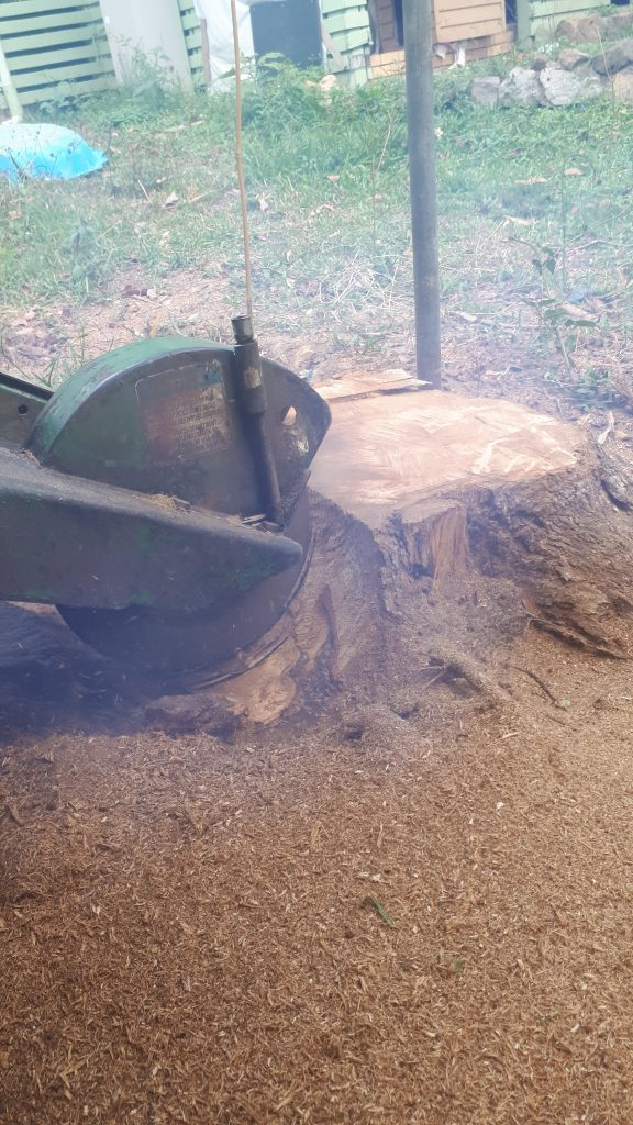 Tree trunk grinding