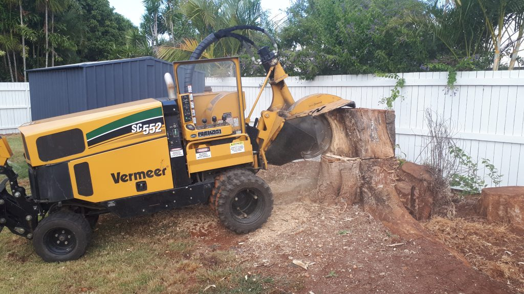 All Access Stump Grinding/Removal Wynum