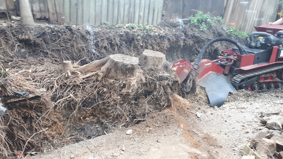 Stump Grinding New Farm
