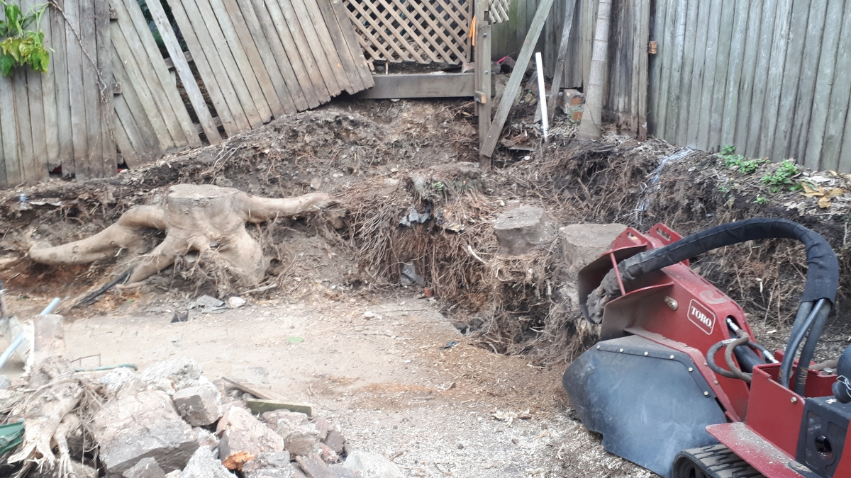 Stump Grinding/Removal New Farm
